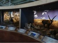 Top 6 Worth visiting Natural Wonders of Crete