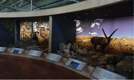 Natural History Museum - Crete