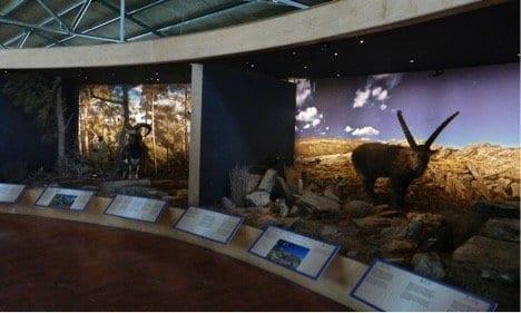 Natural History Museum - Crete
