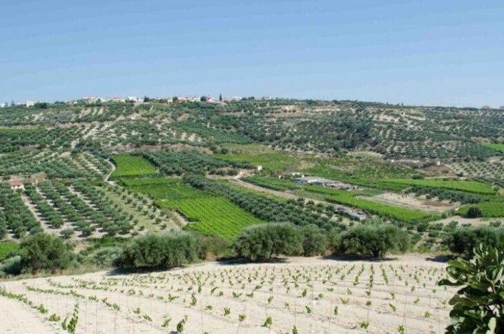 Scalani Hills