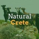 A Guide to Natural Crete