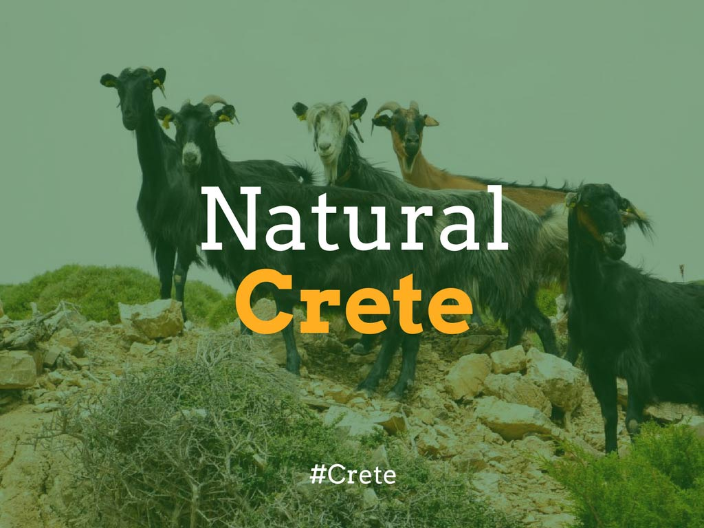 A guide to Natural Crete