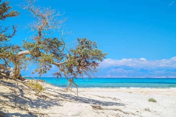 Остров Крисси - Крит