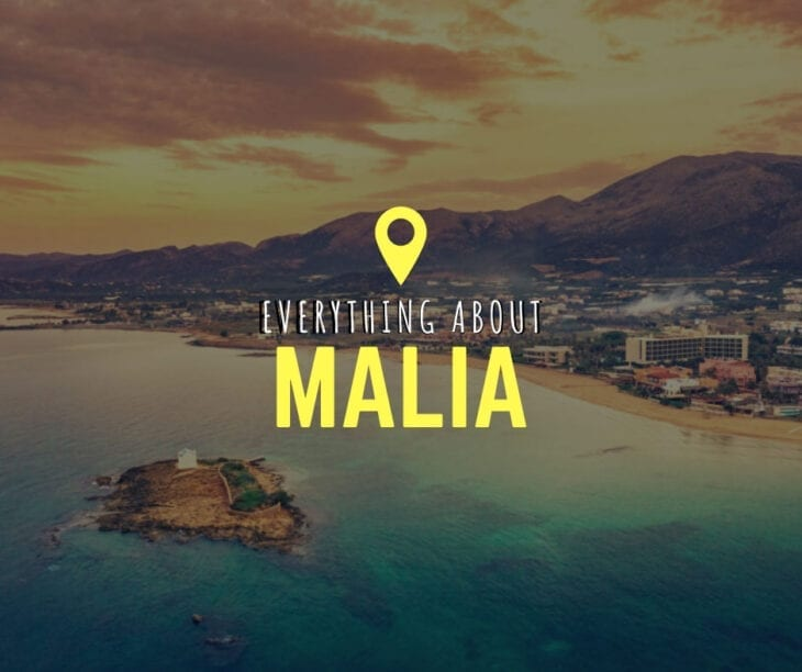 Everything about Malia