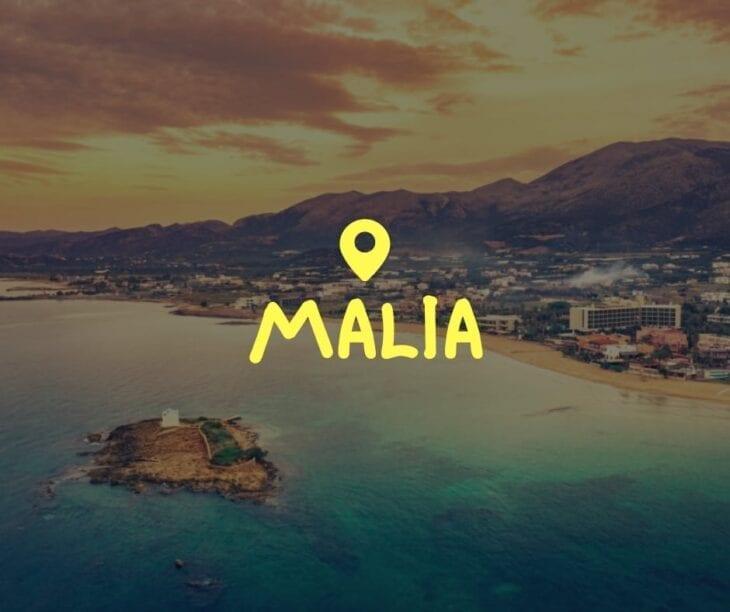 Everything about Malia