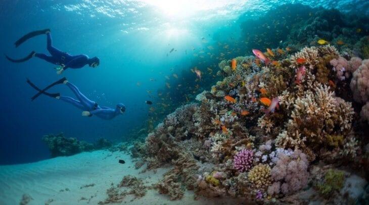 Apneisti nel Mare di Creta