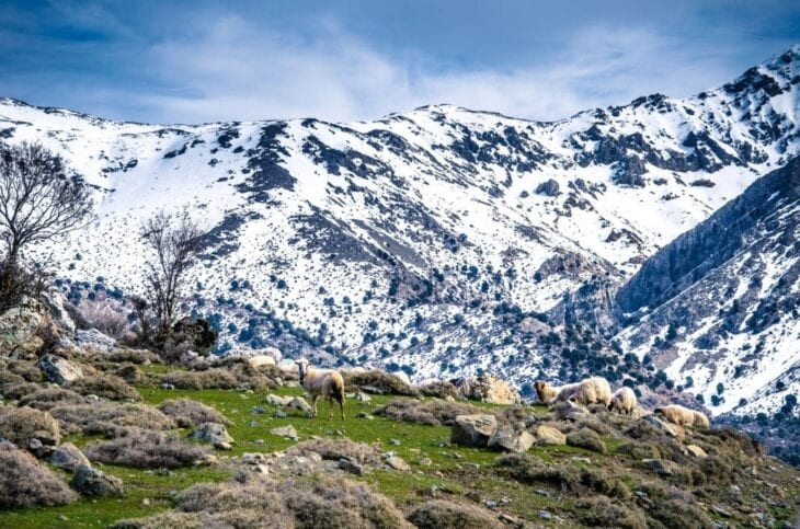 Lassithi mountains in winter in Crete