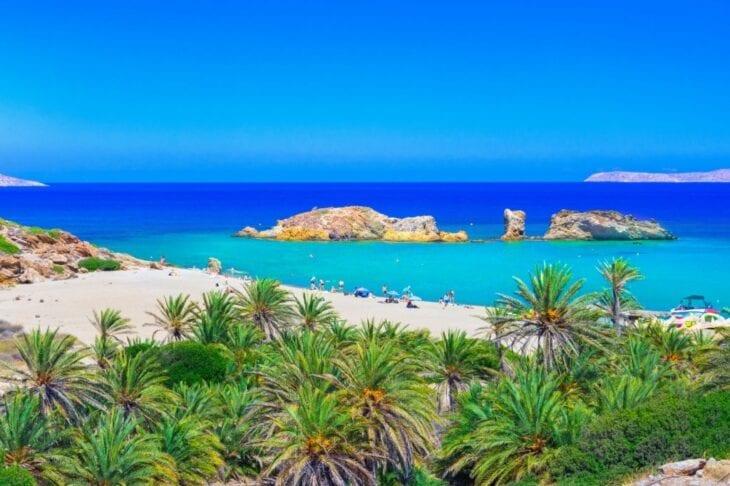 Landscape of palm trees in Vai Beach Crete