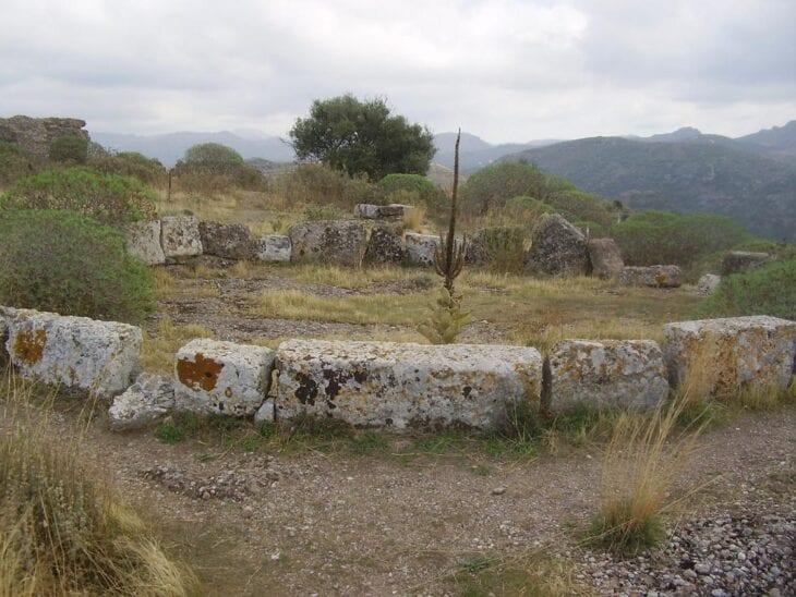 Ancient Polyrrinia
