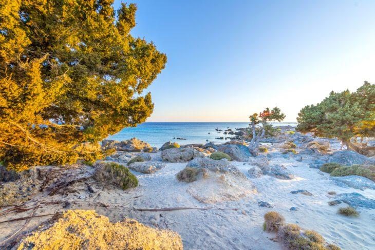 Kedrodasos Beach - Cedar Forest Crete
