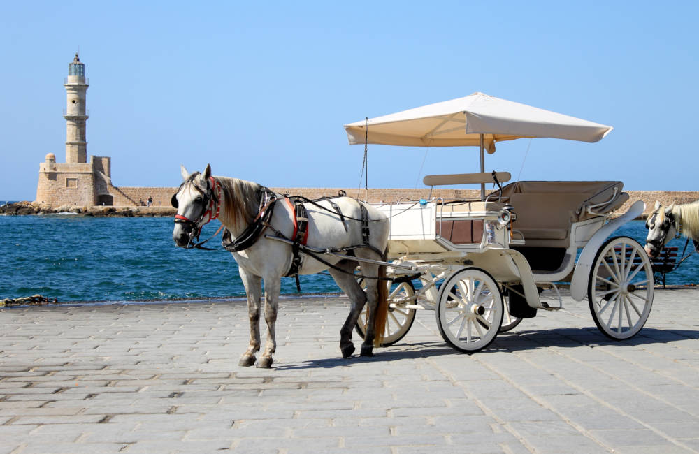 Horse ride in Chania Old Port